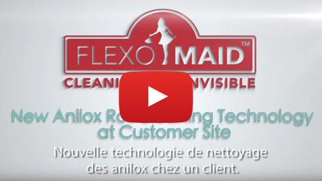 Automated anilox cleaner